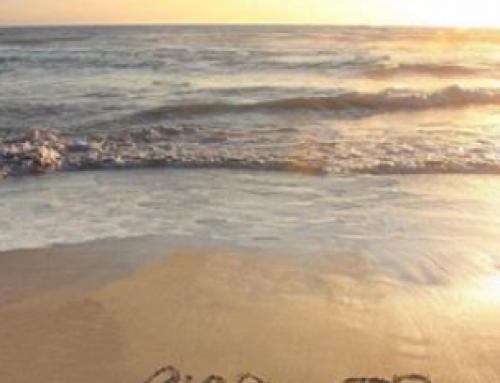 Dear Grieving Parent